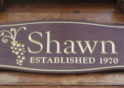 shawn2